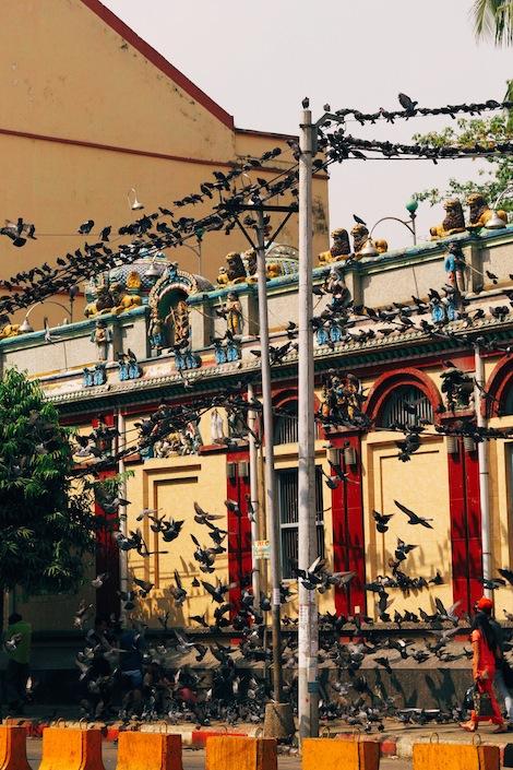 Yangon-image-5b